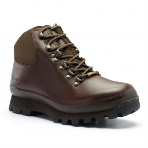 Hillmaster GTX Walking Shoes