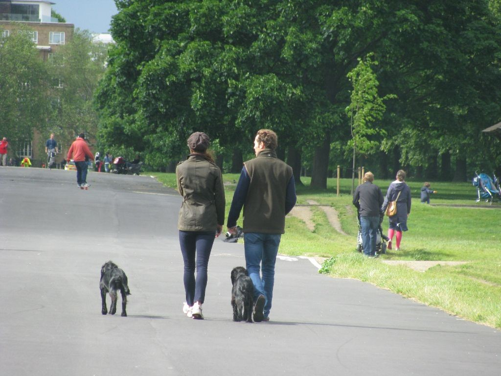 Walking Lupo With James Middleton