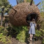 The Magic Garden at Hampton Court & Anna Freud Reception