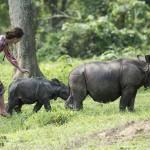 Village Visit & Feeding Elephants